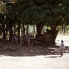 GHANA: Schools Under Trees After 55 Years Of Independence &#8211; By Stephen Atta Owusu